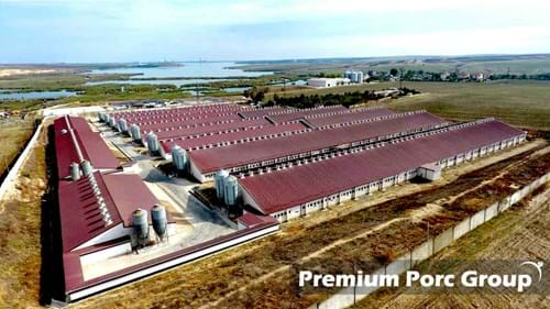 SKIOLD Disc mill solution for Premium Porc Group