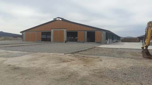 cattle feed solution for Pali Lula farm in Bulgaria